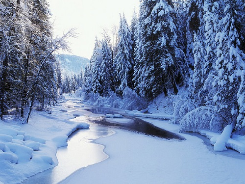 Wenatchee-River-winter-509545_1024_768.jpg